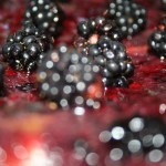 Close up shot of Blackberries by John Carlile